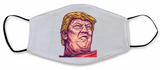 The Donald Stuff Face Masks