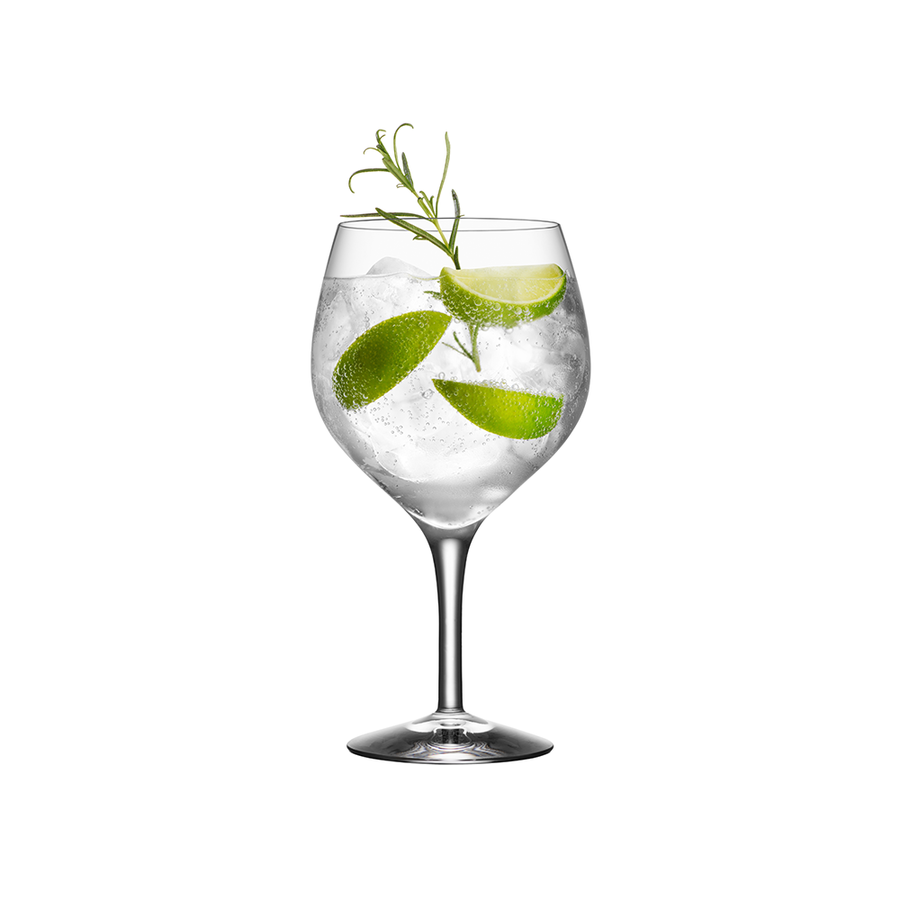 Gin and Tonic Glass (set of 4)