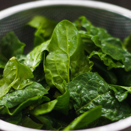 Getting Your Protein From Plants May Help You Live Longer