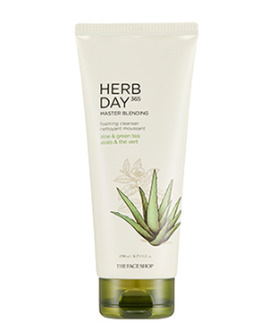 THE FACE SHOP Herb Day 365 Master Blending Foaming Cleanser - Aloe & Green Tea | CLEANSER | BONIIK