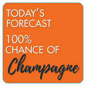B-Stock - Save Water Drink Champagne! / Today's Forecast 100% chance of Champagne