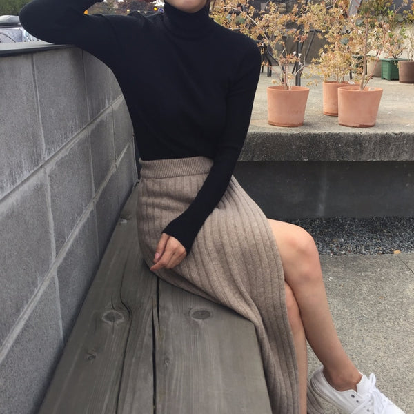 Korean Style Fall Maxi Knit Skirt (Black/Brown)