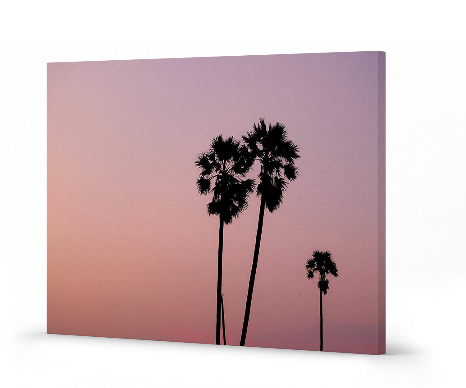 Summer sunsets with Palm Springs Vibes with dusty pink hues - this Palm Canvas Wall Print is it!