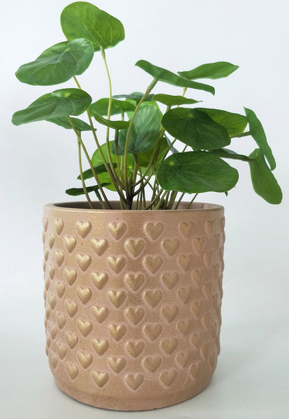 Hearts Pot / Planter. Perfect for your favourite small plants. Interior styling statement piece. Fun