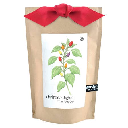 Potting Shed Creations Garden in a Bag Christmas Lights Mini Pepper - Small Batch Foody