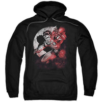 Batman - Robin Spotlight Adult Pull Over Hoodie