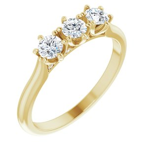 14K Yellow 1/2 CTW Diamond Three-Stone Anniversary Band -123903:605:P-ST-WBC