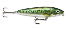 Load image into Gallery viewer, Rapala - Skitter Walk Jr.