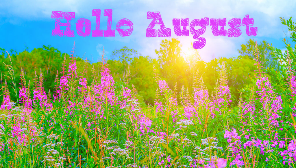 Hello August Flowers Banner