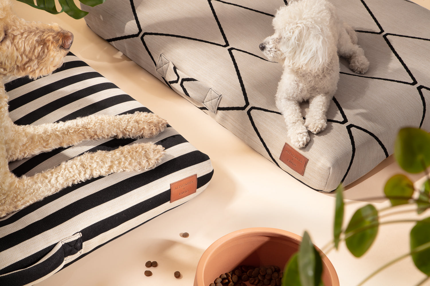 laylo pets altuzarra collection