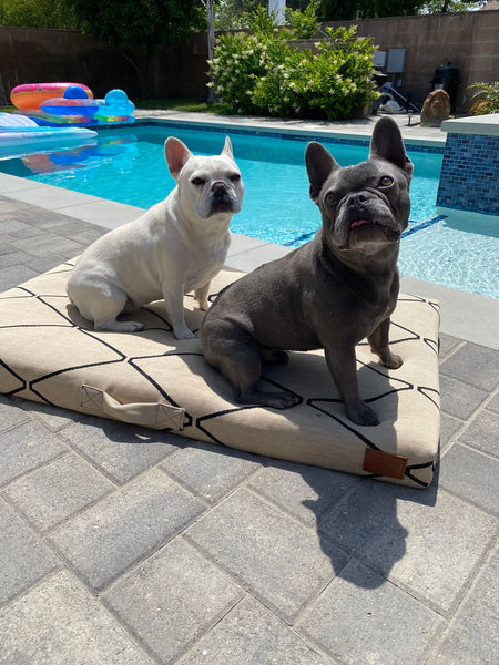 water-resistant bed cover