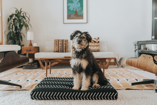 LAY LO Pets - Black Chevron Boho Dog Bed or Bed Cover 1