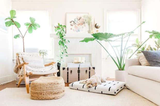 LAY LO Pets - White Rain Boho Dog Bed or Bed Cover 1