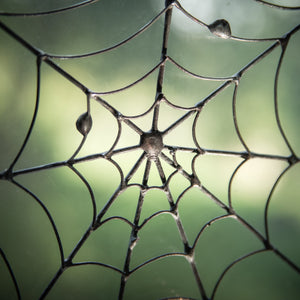 Zoomed round spider web Halloween spooky decoration