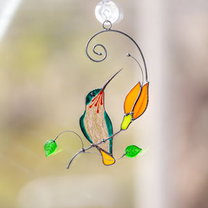 Hummingbird sitting on the branch with orange flower window hanging