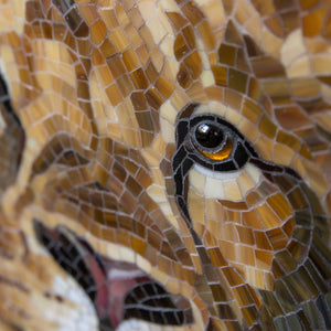 Zoomed eye of a strained glass lion mosaic