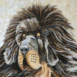 Zoomed stained glass snout of Tibetan Mastiff