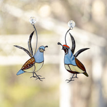 Load image into Gallery viewer, A pair of stained glass male and female California quails suncatchers