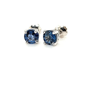 Exquisite Ceylon Sapphire Studs in 14K Gold at an Exceptional Price - Peters VaultsExquisite Ceylon Sapphire Studs in 14K Gold at an Exceptional Price - Peters Vaults