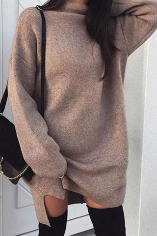 Sheinnow High Neck  Plain  Batwing Sleeve Sweaters