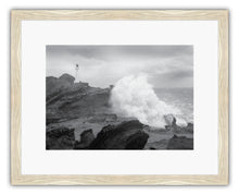 Load image into Gallery viewer, CASTLEPOINT STORM BW 2