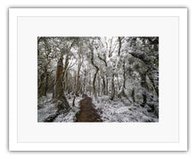 Load image into Gallery viewer, HOLDSWORTH SNOW