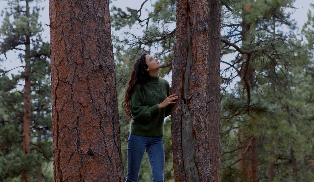 a young woman looks up at a pine tree in a the forest. she is practicing forest bathing.