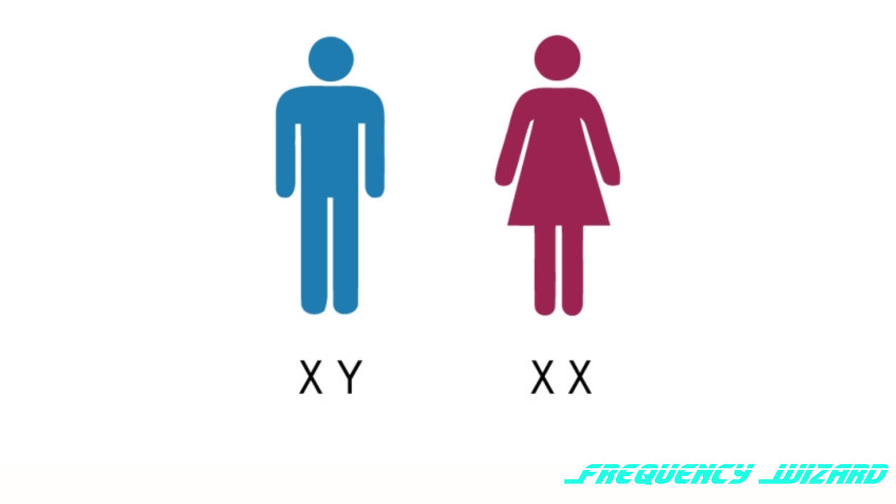 Change XY Chromosomes to XX Chromosomes Fast! Targets the DRMT1 - Subliminals Frequencies - FREQUENCY WIZARD