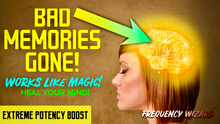 Load image into Gallery viewer, ERASE UNWANTED MEMORIES FAST! HEAL YOUR MIND TO ATTRACT RESULTS! REMOVE BAD MEMORY BLOCKAGES! FREQUENCY WIZARD