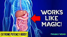 Load image into Gallery viewer, GET AN EXTREMELY HEALTHY DIGESTIVE SYSTEM FAST! SUBLIMINAL BINAURAL BEAT HYPNOSIS THETA MEDITATION - FREQUENCY WIZARD