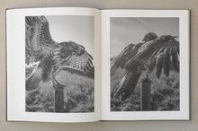 Load image into Gallery viewer, Stephen Gill - The Pillar (2nd Ed. Signed Copy)