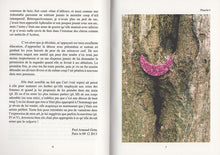 Load image into Gallery viewer, Paul Armand Gette - Divertissements botaniques (édition de tête)