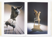 Load image into Gallery viewer, Oda Jaune - Sculptures