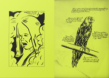 Load image into Gallery viewer, Raymond Pettibon - Selected Works from 1982 to 2011