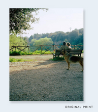 Load image into Gallery viewer, John Divola - Seven Dogs