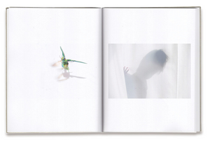 Rinko Kawauchi - as it is