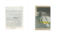 Load image into Gallery viewer, Katrien De Blauwer - You could at least pretend to like yellow