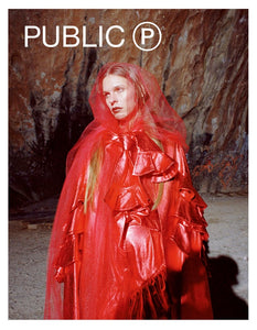 Public Issue 2