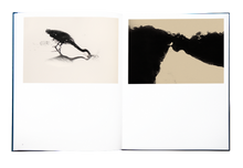 Load image into Gallery viewer, Albarràn Cabrera - Des Oiseaux