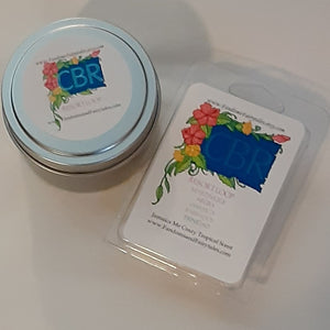 WDW Inspired Clamshell Wax Melts