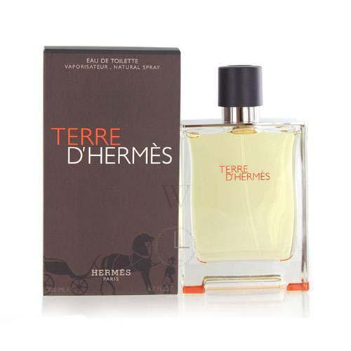 Terre D'Hermes 200ml EDT for Men by Hermes