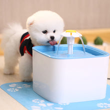 Load image into Gallery viewer, Cheap Cat Fountain For Sale! Buy A Healthy and Hygienic Drinking Fountain For Your Lovely Pets.