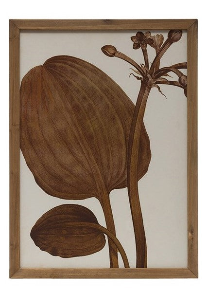 Wood Framed Wall Decor w/ Botanical Image