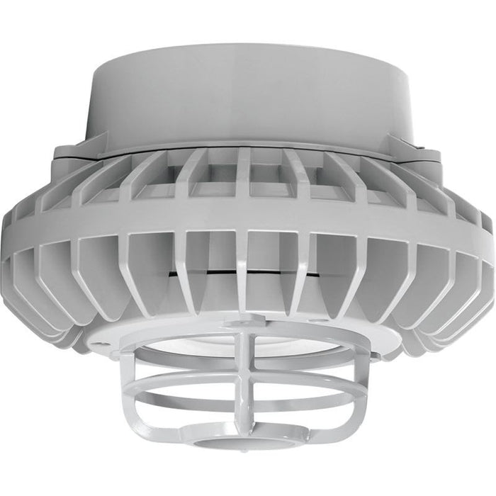 RAB 26 Watt LED HAZ Vaporproof - Clear Lens - Die Cast Guard - Pendant Mount - 5000K - 2,503 Lumens - 120-277V - Gray