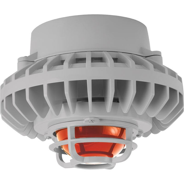 RAB 80 Watt LED HAZ Vaporproof - Frosted Amber Globe - Die Cast Guard - Pendant Mount - 5000K - 120-277V - Gray