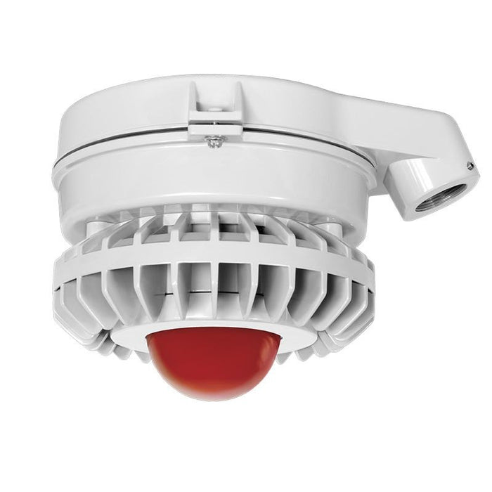 RAB 42 Watt LED HAZ Vaporproof - Frosted Red Globe - No Guard - Stanchion Mount - 5000K -120-277V - Gray