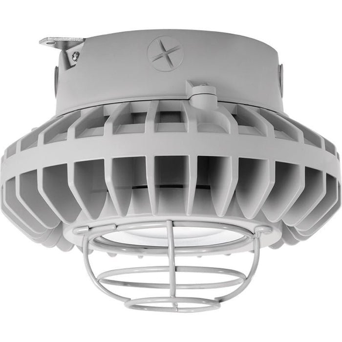 RAB 42 Watt LED HAZ Vaporproof - Clear Lens - Wire Guard - Ceiling Mount - 5000K - 4,244 Lumens - 120-277V - Gray