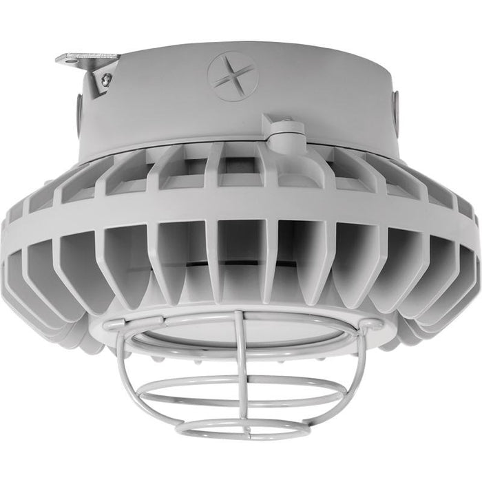 RAB 42 Watt LED HAZ Vaporproof - Frosted Lens - Wire Guard - Ceiling Mount - 5000K - 3,248 Lumens - 120-277V - Gray