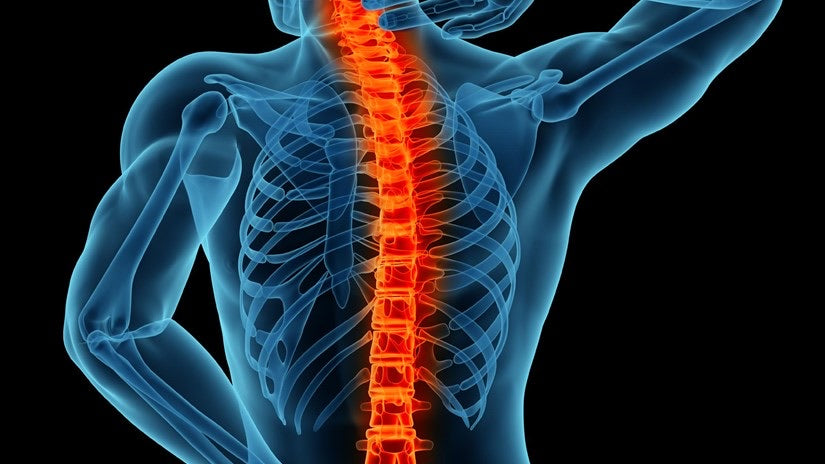 Neck And Back Pain Relief Products
