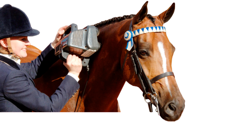 Thumper-Equine Professional Massager